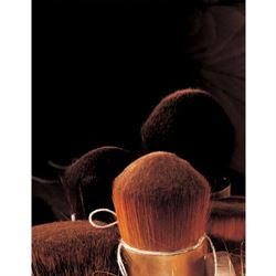 Raphael Fine Art Brushes