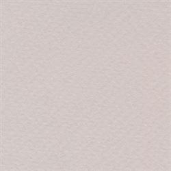 "Disc Bee Pastel Paper 98 lb. 19""X25"" Pearl Gray"