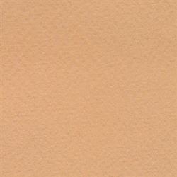 """Disc Bee Pastel Paper 98 lb. 19""""X25"""" Tan"""